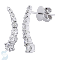 4047 0.93 Ctw Fashion Earring